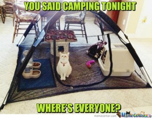 Mary Monday Camping Cat